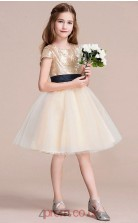 Princess Jewel Short Sleeve Gold Organza Sequined Knee-length Children's Prom Dress(AHC051)