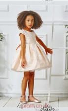 Light Champange Satin Organza Jewel Short Sleeve Mini Ball Gown Children's Prom Dress (FGD312)