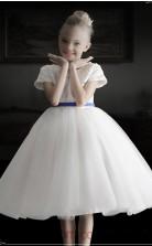 Ivory Satin Organza Jewel Short Sleeve Knee-length Princess Children's Prom Dress (FGD321)