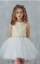 Ivory Organza Jewel Sleeveless Mini Princess Children's Prom Dress (FGD330)