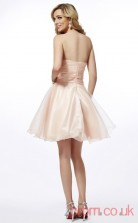 Pearl Pink Chiffon A-line Short Strapless Graduation Dress(JT2149)