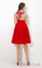 Red Tulle A-line Mini Sweetheart Short Sleeve  Graduation Dress(JT2368)