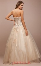 Light Champange Tulle Princess Strapless Floor-length Evening Dresses(JT2705)