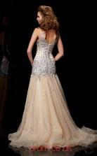 Light Champange Organza A-line V-neck Floor-length Evening Dresses(JT2728)