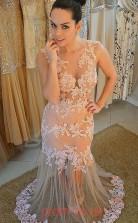 Champange Lace Trumpet/Mermaid V-neck Sweep Train Sex Prom Dress(JT3848)
