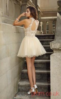 Champagne Tulle Lace A-line Mini Halter Graduation Dress(JT2263)