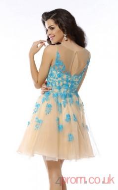 Champagne Lace Tulle A-line Mini V-neck Graduation Dress(JT2318)