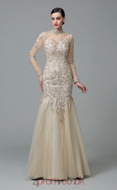 Beige Lace , Chiffon Trumpet/Mermaid Long Sleeve Illusion , High Neck Floor-length Evening Dress(JT2497)