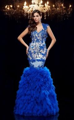 Light Royal Blue Tulle V-neck Short Sleeve Floor-length Mermaid Prom Dress(JT2563)