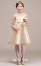 Champagne Lace Kids Girl Short/Mini Birthday Party Formal Dress BCH037