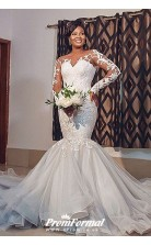 Sheer Neck Illusion Long Sleeve Lace Plus Size Mermaid Wedding Gown BWD045