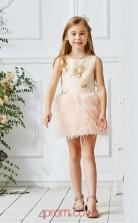 Light Champange Satin Lace Jewel Sleeveless Mini Princess Children's Prom Dress (FGD313)