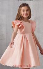 Pink Satin Jewel Short Sleeve Mini Princess Children's Prom Dress (FGD333)