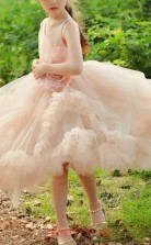 Pearl Pink Tulle V-neck Princess Knee-length Kids Prom Dresses(FGD340)