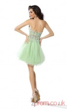 Light Sage Tulle Lace A-line Mini Sweetheart Graduation Dress(JT2239)
