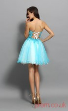 Light Jade Lace Tulle A-line Mini Sweetheart Graduation Dress(JT2257)