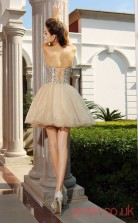Champagne Organza A-line Mini Sweetheart Graduation Dress(JT2262)