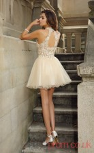 Champagne Tulle Lace A-line Mini Halter Graduation Dress(JT2263)