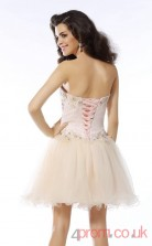 Ivory Tulle A-line Mini Sweetheart Graduation Dress(JT2283)