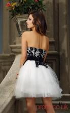 Ivory Lace Tulle A-line Mini Sweetheart Graduation Dress(JT2296)