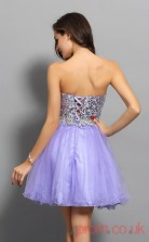 Lavender Sequined Tulle A-line Mini Sweetheart Graduation Dress(JT2303)