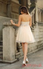 Beige Tulle A-line Mini Strapless Graduation Dress(JT2308)