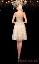 Beige Lace A-line Mini V-neck Graduation Dress(JT2360)
