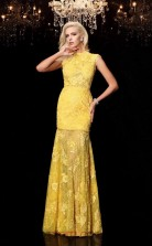 Yellow Lace High Neck Short Sleeve Floor-length Trumpet Evening Dress(JT2559)