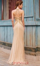 Trumpet/Mermaid Tulle Lace Champagne Halter Long Evening Dress(JT2636)