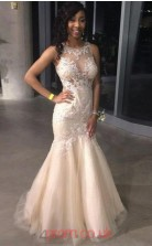 Gray Tulle Lace Trumpet/Mermaid Illusion Floor-length Prom Dress(JT3838)