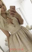Gray Lace, Satin A-line V-neck Mini Cocktail Dress(JT3864)