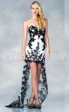Ivory Lace,Tulle Sheath Sweetheart Hi-Lo Cocktail Dresses(PRJT04-0491)