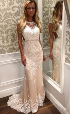 SheathColumn Tulle Sweep Train Appliques Lace Open Back Prom Dress  JTA5461