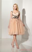 Champange Tulle Lace Ball Gown Straps Sleeveless Evening Dresses(JT4-LFDZC121)