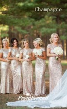 Silver/Gold Sequined Mermaid Backless Bridesmaid Dress BD04-1440