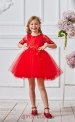Red Lace Tulle Jewel Short Sleeve Mini Princess Children's Prom Dress (FGD318)