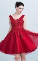 Burgundy Tulle Lace A-line Straps Short Sleeve Short/Mini Prom Dress(JT3655)