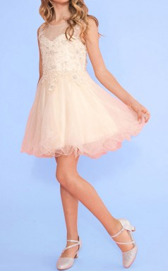 Pink Tulle Lace Illusion Sleeveless Mini Princess Children's Prom Dress (FGD294)