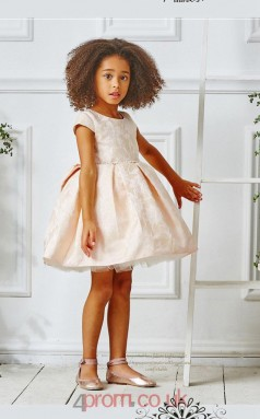 Light Champange Satin Organza Jewel Short Sleeve Mini Ball Gown Children's Prom Dress (FGD312)