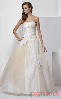 Light Gray Organza Strapless Floor-length Princess Quincenera Dress(JT2036)