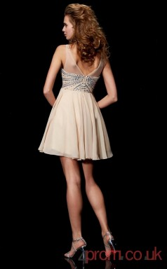 Champagne Chiffon A-line Short Illusion Graduation Dress(JT2110)