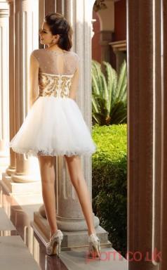 White Tulle A-line Mini Illusion Short Sleeve  Graduation Dress(JT2266)