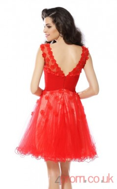 Bright Red Tulle A-line Mini Bateau Short Sleeve  Graduation Dress(JT2319)