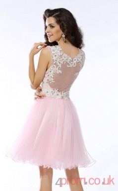 Blushing Pink Tulle Lace A-line Mini V-neck Graduation Dress(JT2324)