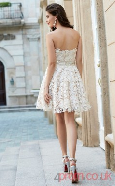 Ivory Lace A-line Mini Strapless Graduation Dress(JT2441)