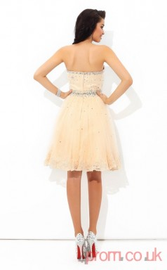 Pearl Pink Tulle A-line Mini Sweetheart Graduation Dress(JT2453)